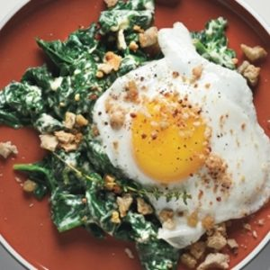Sunny-Side-up Eggs on Mustard-Creamed Spinach with Crispy Crumbs recipes