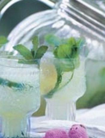 Tequila Mojitos recipes