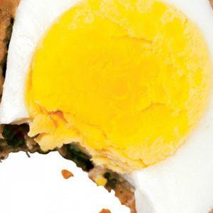 Scotch Eggs recipes